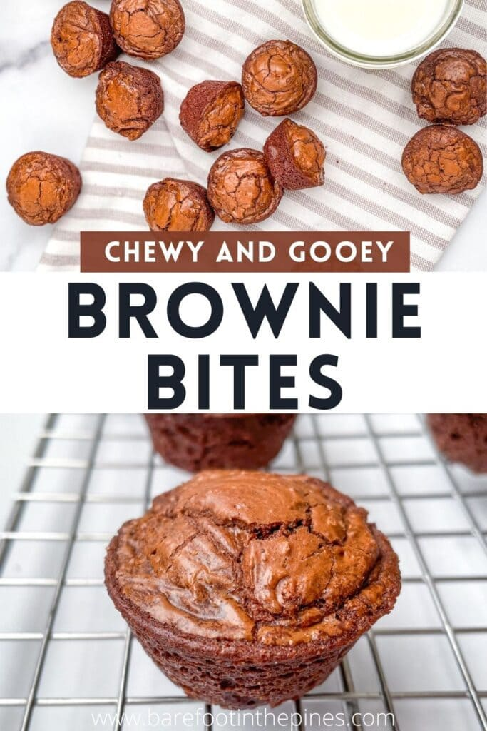 The Best Chocolate Brownie Bites! Fudgy Homemade Chocolate Brownies Made In a Mini Muffin Pan